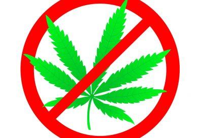Glasno NE legalizaciji marihuane