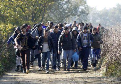 Kako Srbija da se postavi prema migrantima
